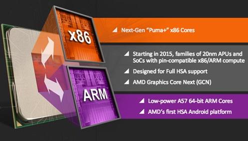 Thời gian tới AMD sẽ sản xuất bo mạch chủ dùng cả chip ARM và X86