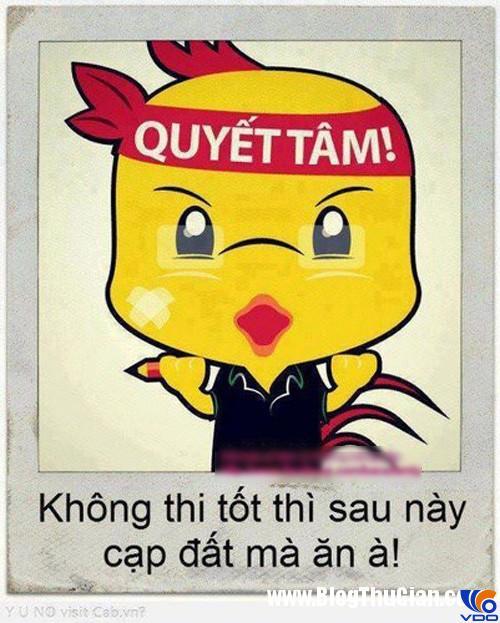 nhung-stt-nhung-loi-chuc-thi-tot-hay-va-y-nghia-nhat3