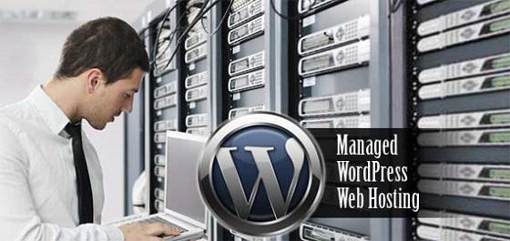 Yêu cầu và kinh nghiệm chọn hosting cho WordPress