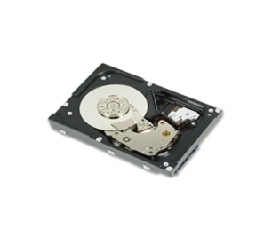 DELL 300GB 15K RPM SAS 12Gbps 2.5in Hot-plug Drive, 3.5in HYB CARR, CusKit