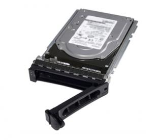 DELL 1TB 7.2K RPM SATA 6Gbps 3.5in Hot-plug Hard Drive,13G